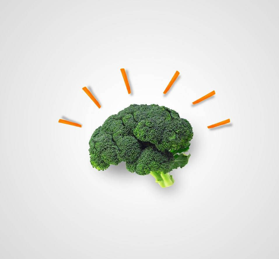 Broccoli that is shaped like a human brain