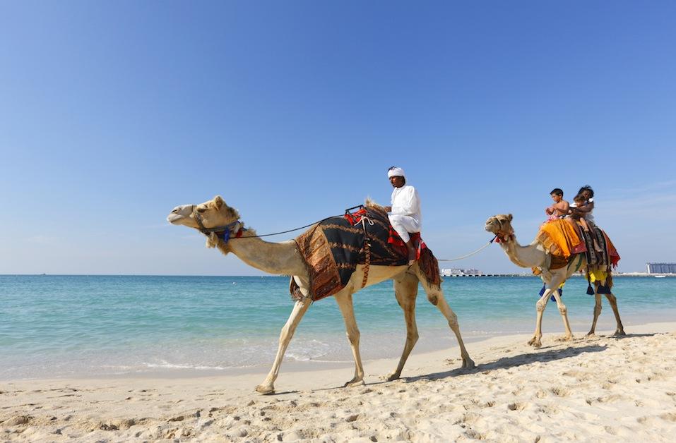 Tourist children riding camels on the Jumeirah beach