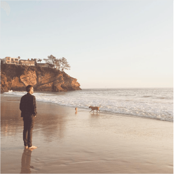 Lauren Conrad's husband William Tell with their dogs