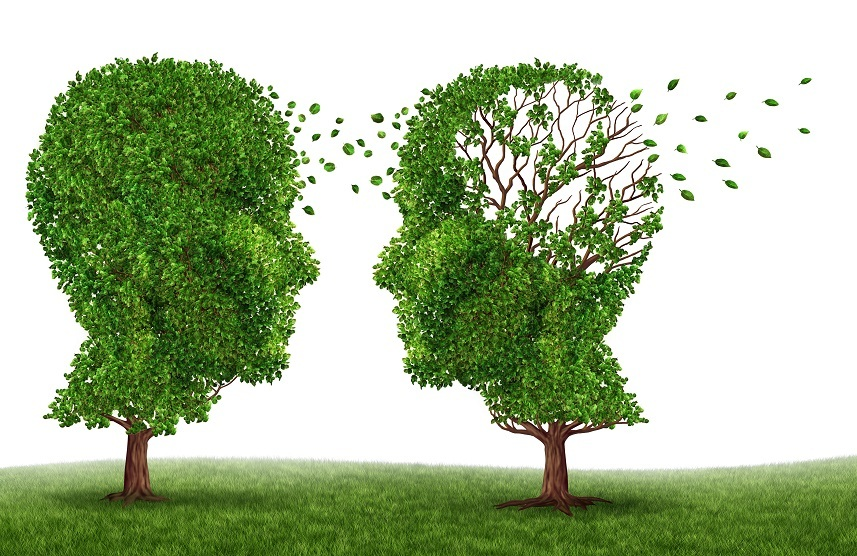 Two trees in the shape of a human head and brain as a symbol of dementia