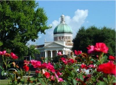 Rose garden in Hattiesburg, Mississippi |