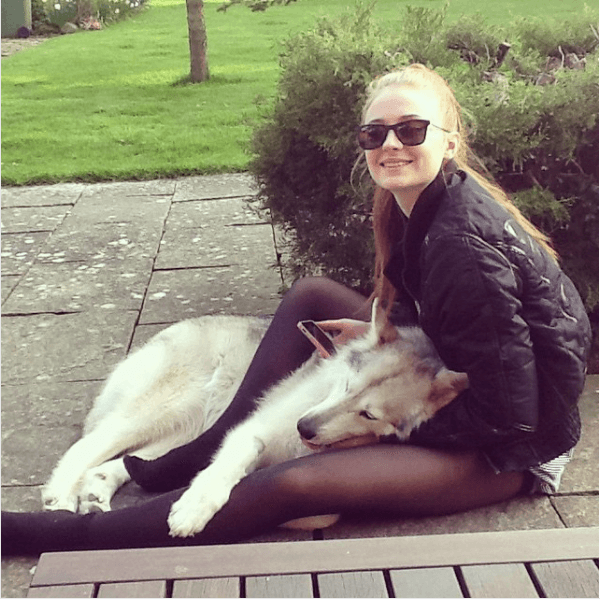 Sophie Turner with her dog, Zunni