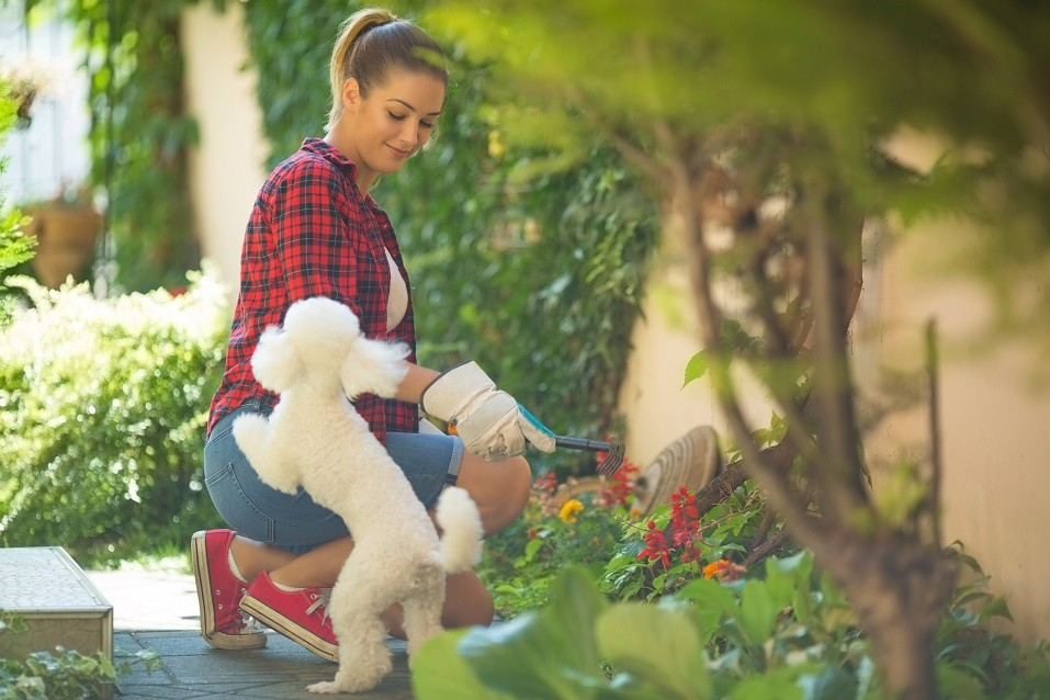 Young women playing with her dog in the garden