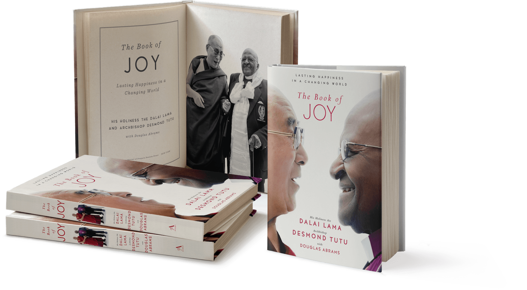 Cover art for The Book of Joy