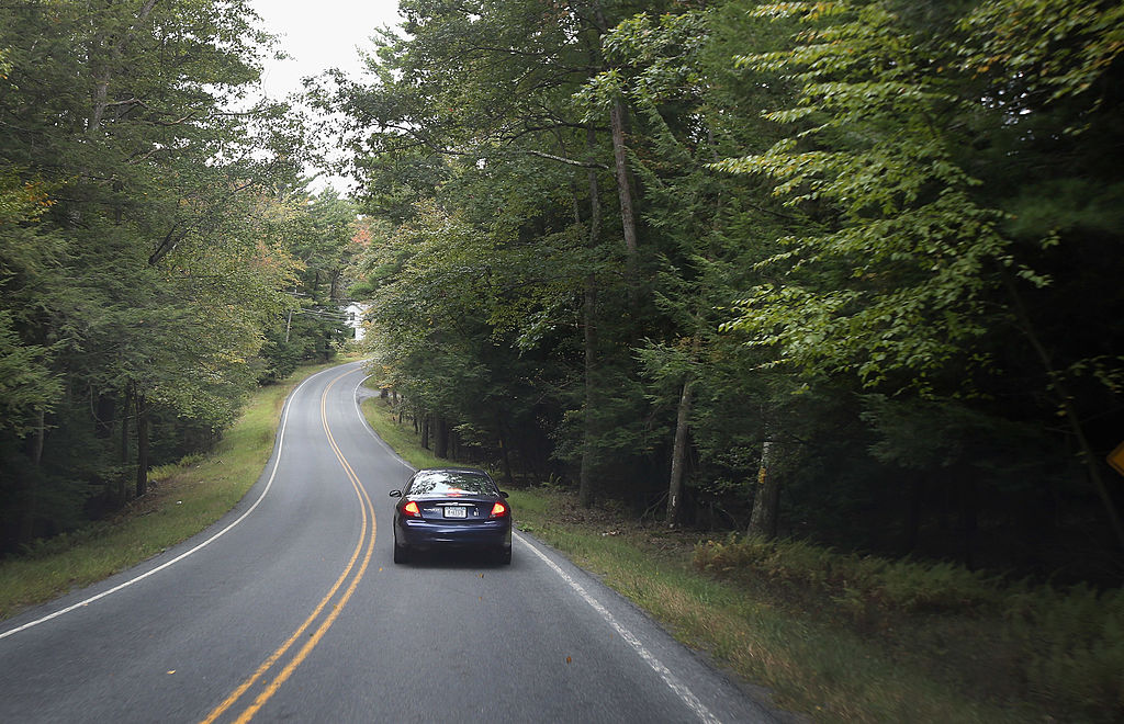 car on wooded road