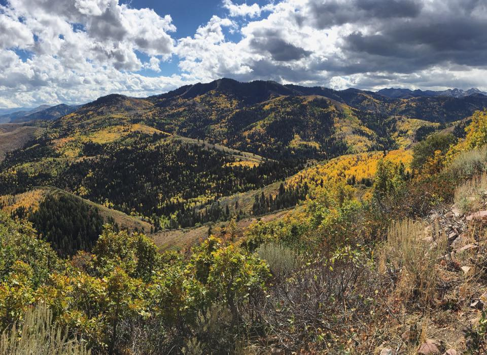 View near Summit Park, Utah