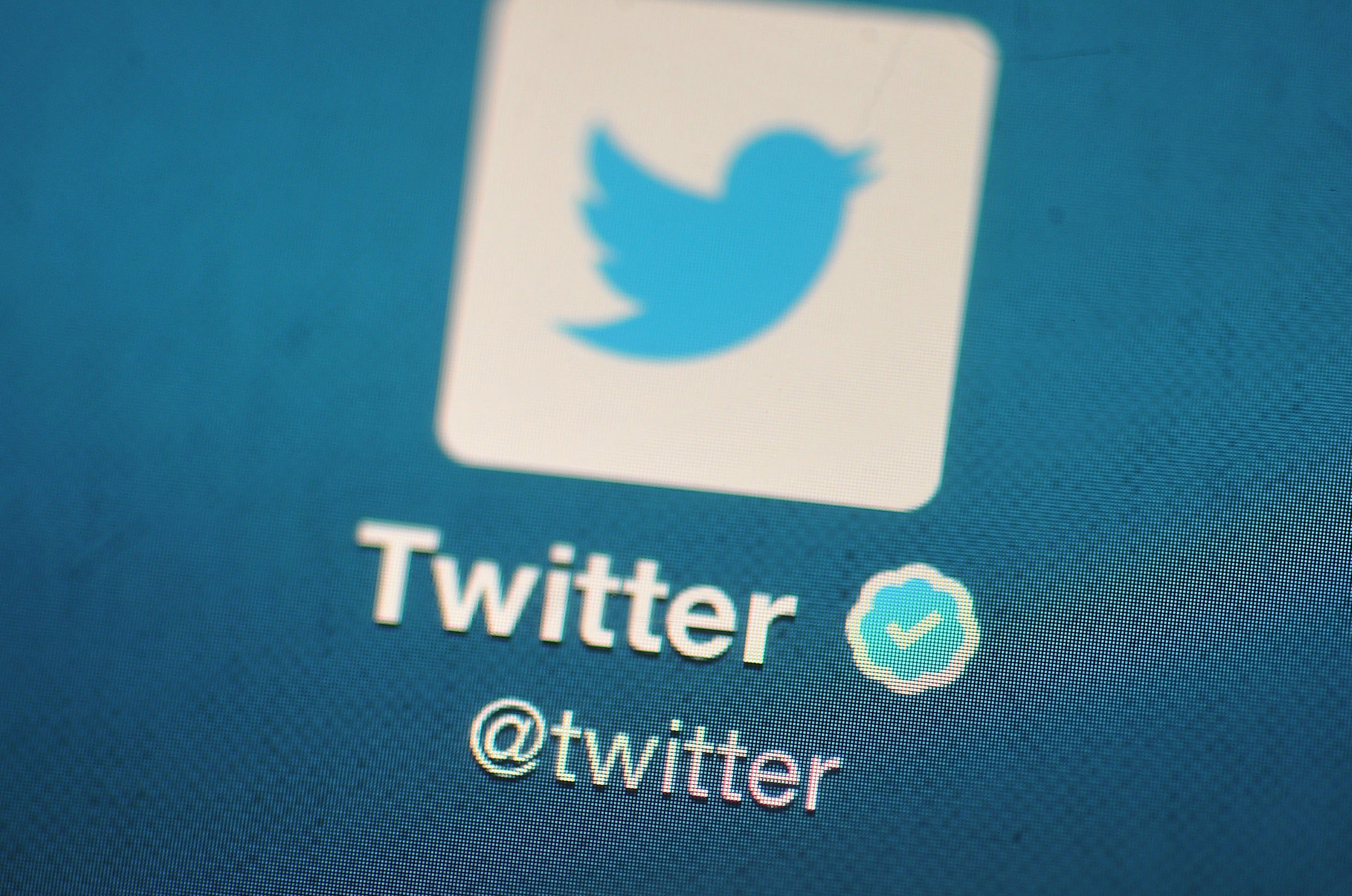 twitter logo, blue bird in a white box on a blue background