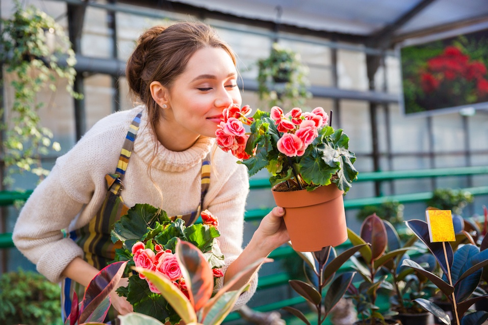 Attractive cute woman gardener smelling pink flowers in pot