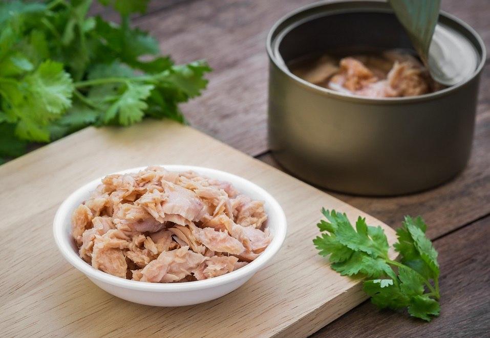 tuna fish in bowl