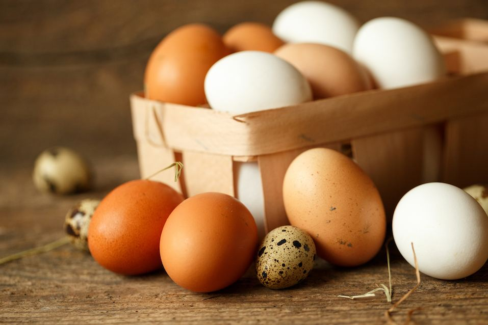 Fresh chicken and quail eggs on a wooden rustic background