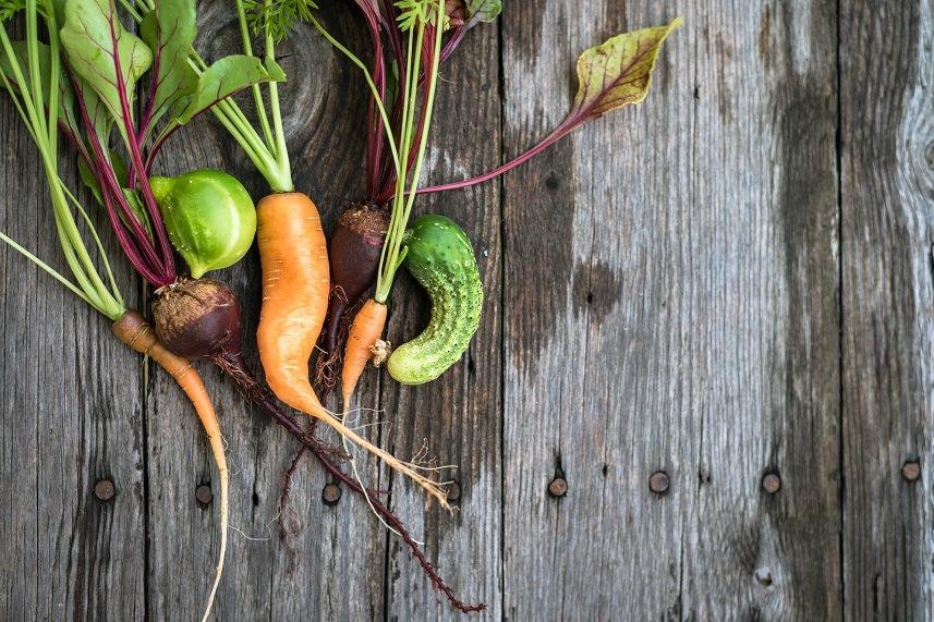 Trendy ugly organic carrot