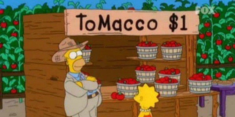 Home is leaning against a ToMacco stand while Lisa looks at it.