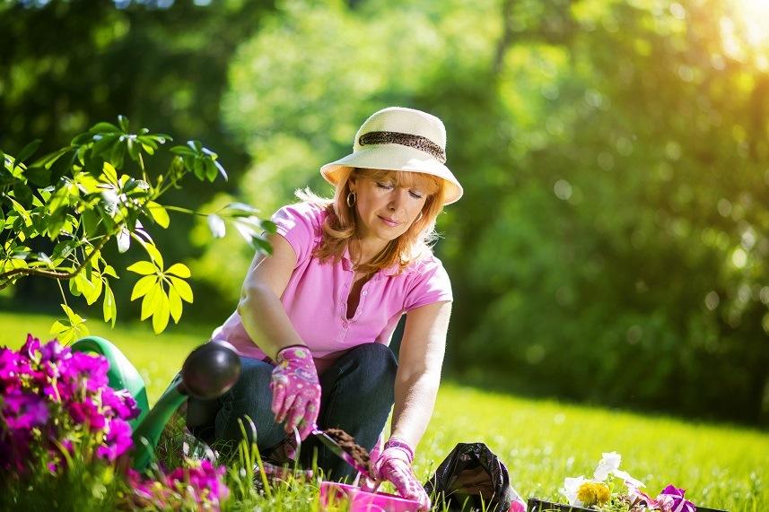Gardener taking care of her plants