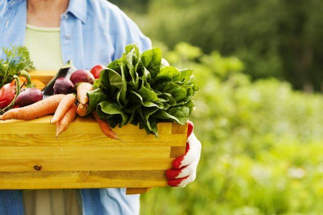 Woman holding box of vegetables.