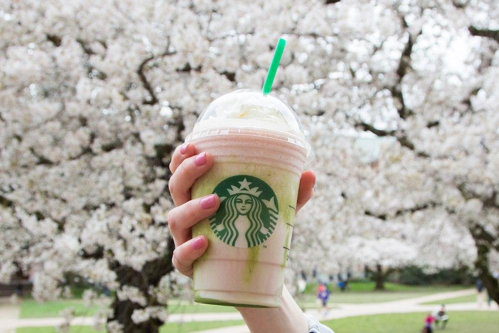 The cherry blossom frappucino