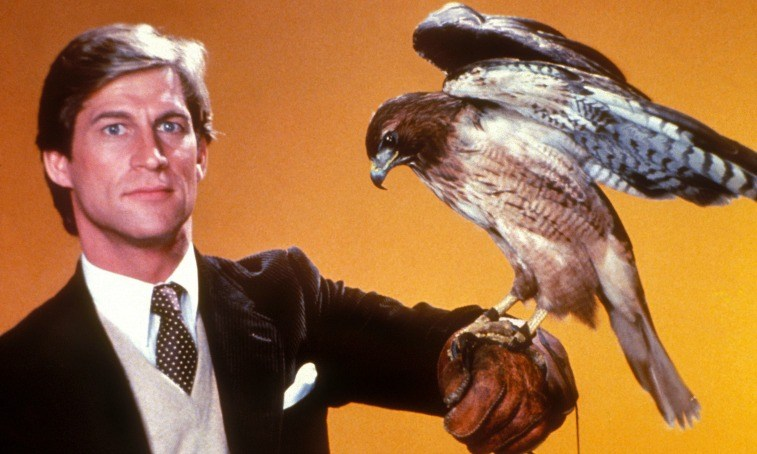 Dr. Jonathan Chase holds a hawk on his arm