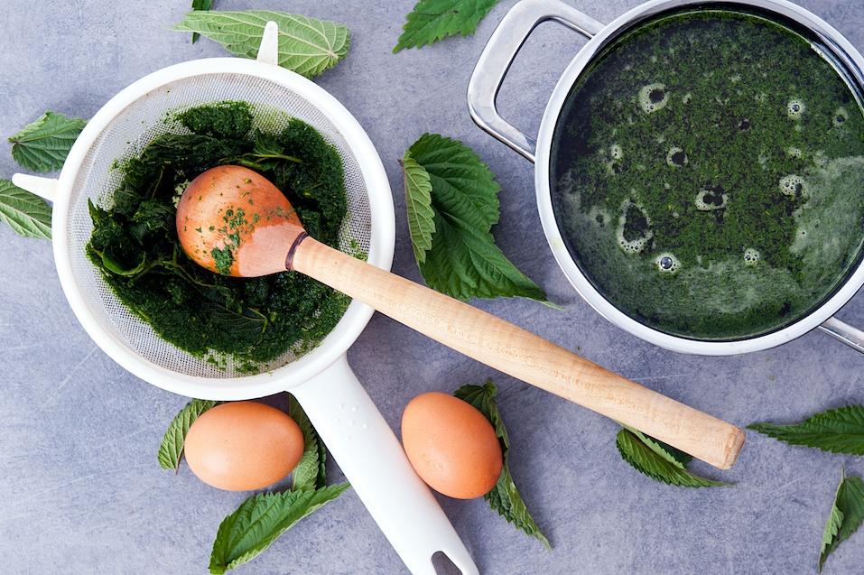 vegetarian nettle soup