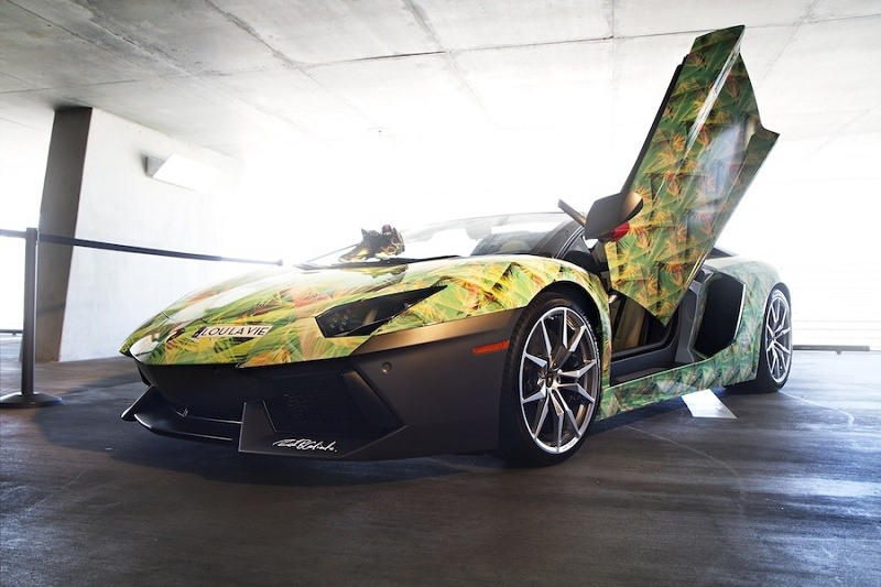 View of custom wrapped Aventador with door open