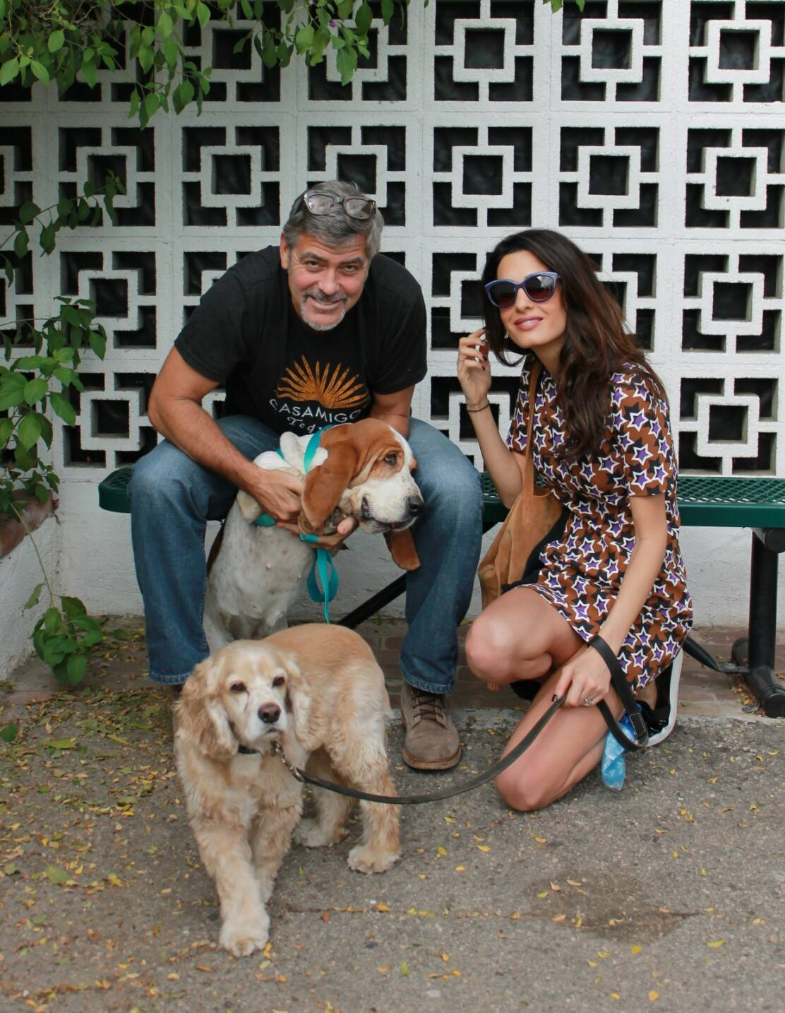George Clooney and Amal Clooney with their rescue dogs