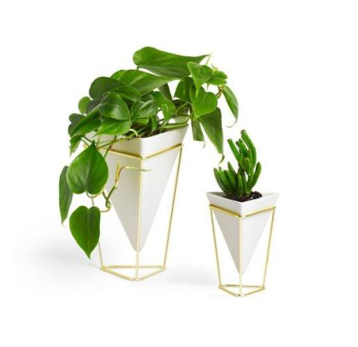two geometric planters with greens