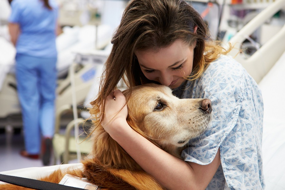 Dog Visiting Young Happy Female Patient In Hospital
