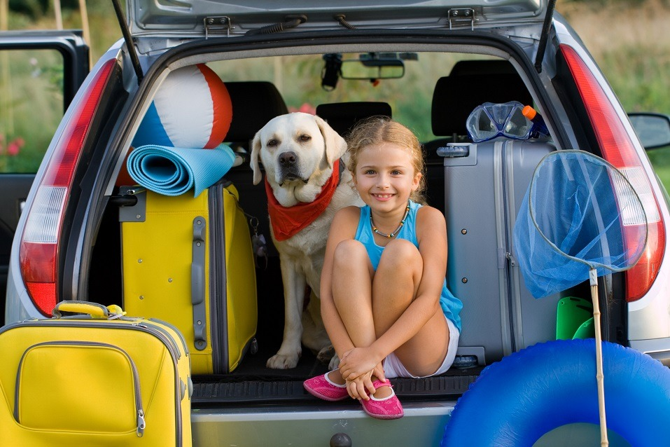 girl with dog and luggage in car