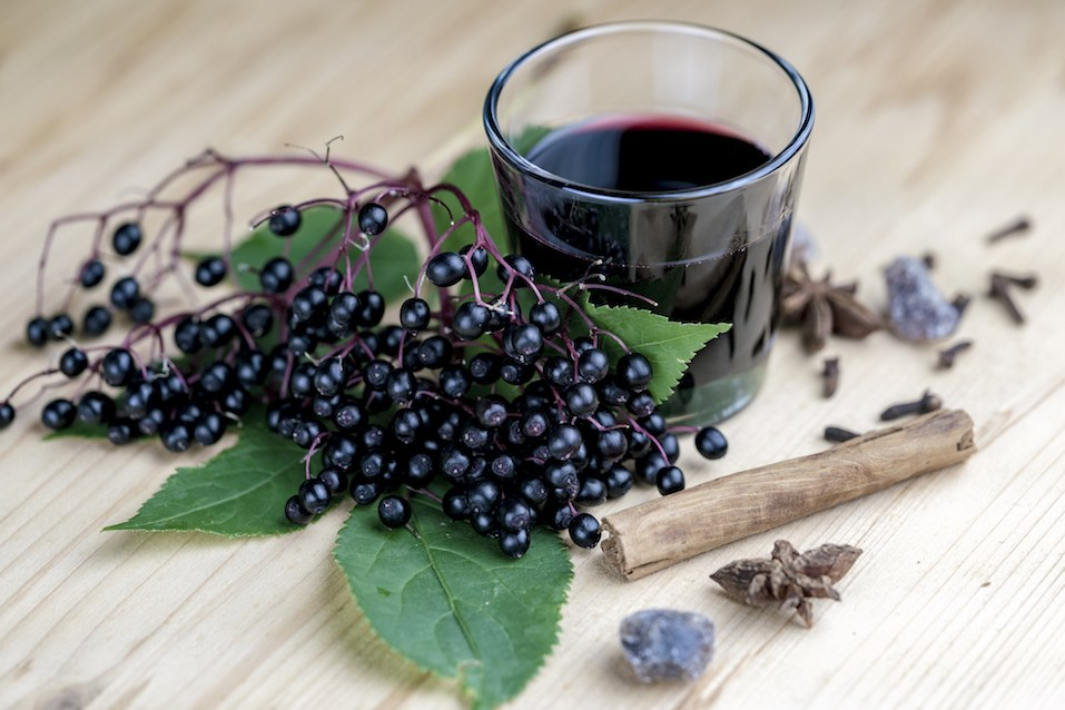 Glass of fresh elderberry syrup with cinnamon stick