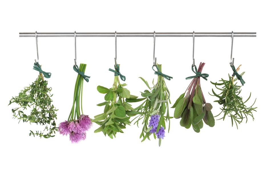 Herb leaf and flower bunches of thyme
