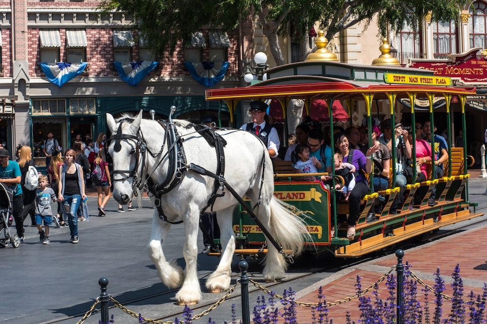 Horse-drawn streetcar at Disneyland