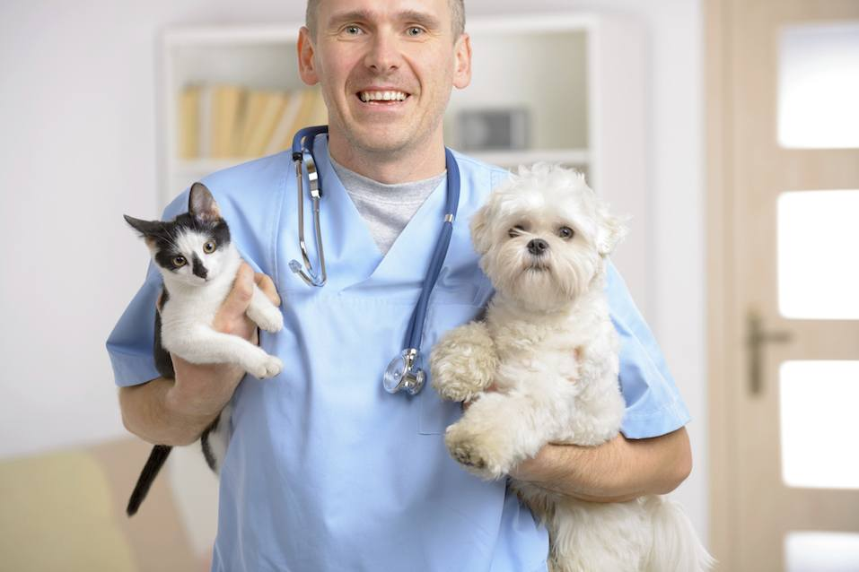 Happy vet with dog and cat