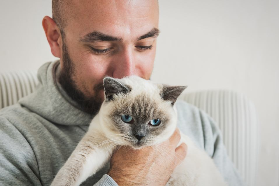 Man sitting in an armchair, holding his gorgeous pet cat