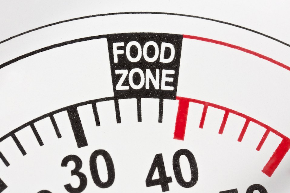 """thermometor marked """"food zone"""" from 34 to 40 degrees"""