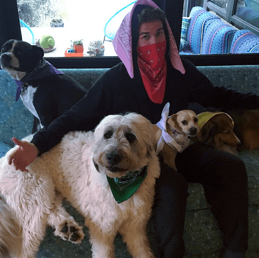 Liam Hemsworth and his dogs