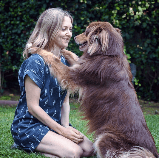 Amanda Seyfried and her dog Finn