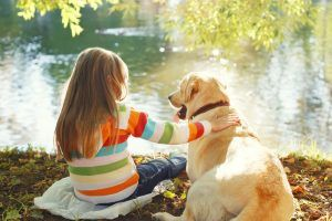 These Are the Dog Breeds Who Will Want to Be Best Friends With a New Baby