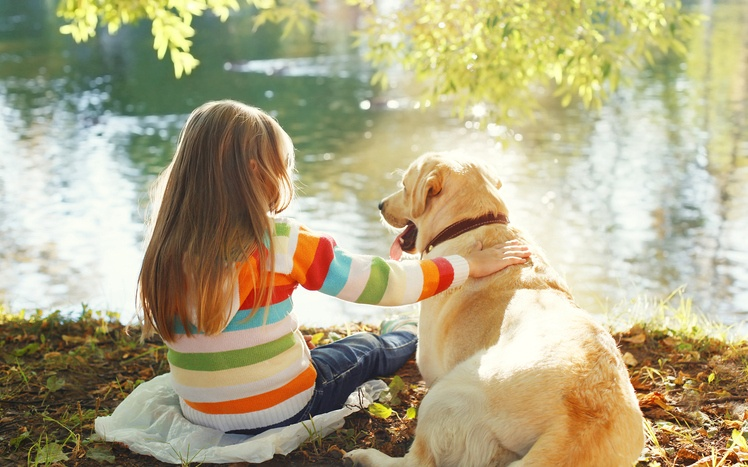 Two friends, child with Labrador retriever dog sitting in sunny summer park near water