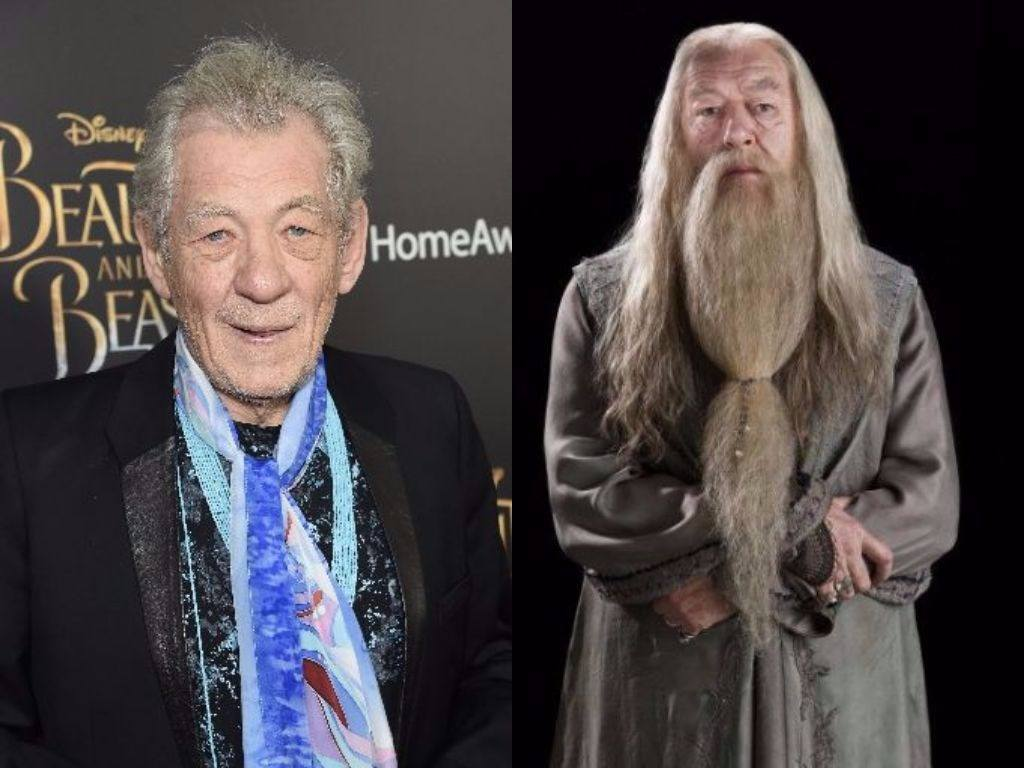 Ian McKellen on the red carpet and Albus Dumbledore in Harry Potter