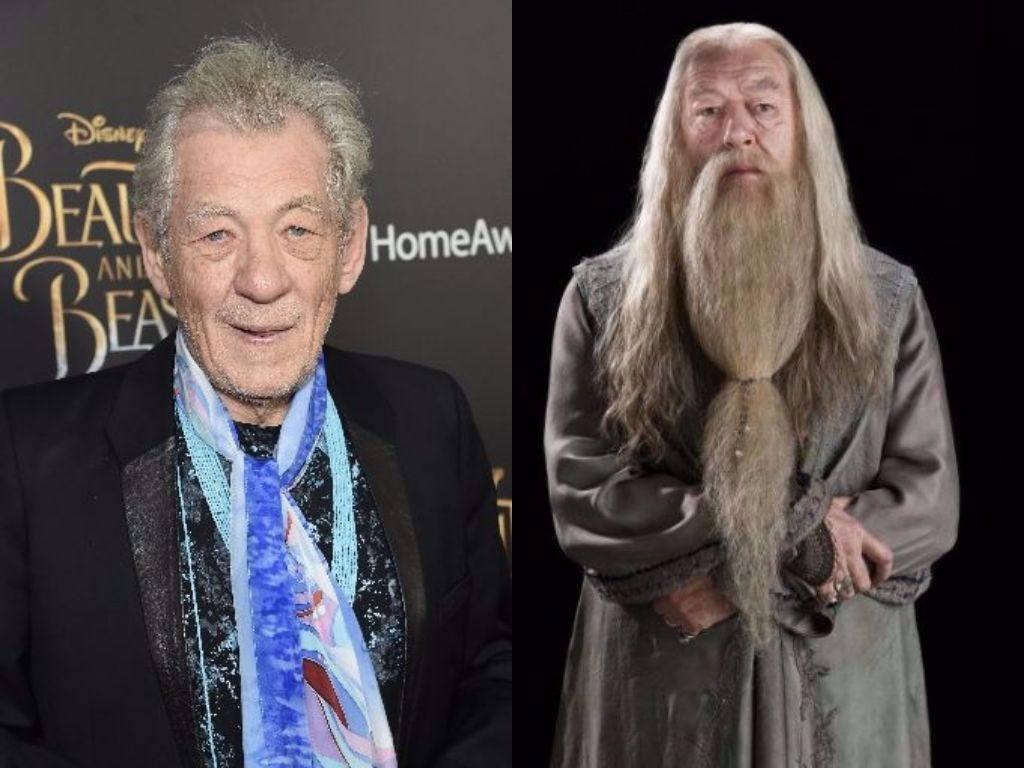 Ian McKellen on the red carpet and Albus Dumbledore in Harry Potter