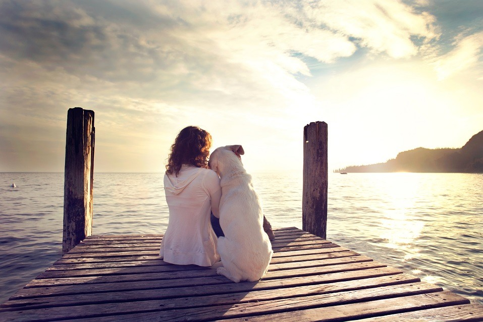 dog rests head on owner's shoulder while sitting on dock