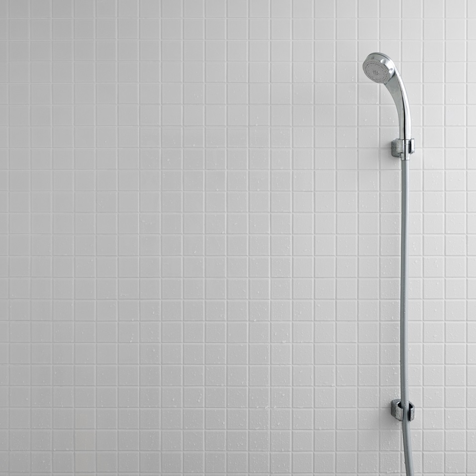 shower head and tiles with white grout