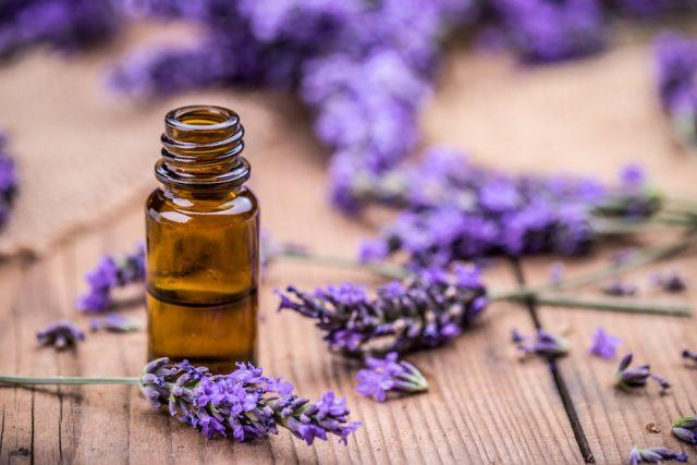 Herbal oil and lavender flowers on a wooden table.