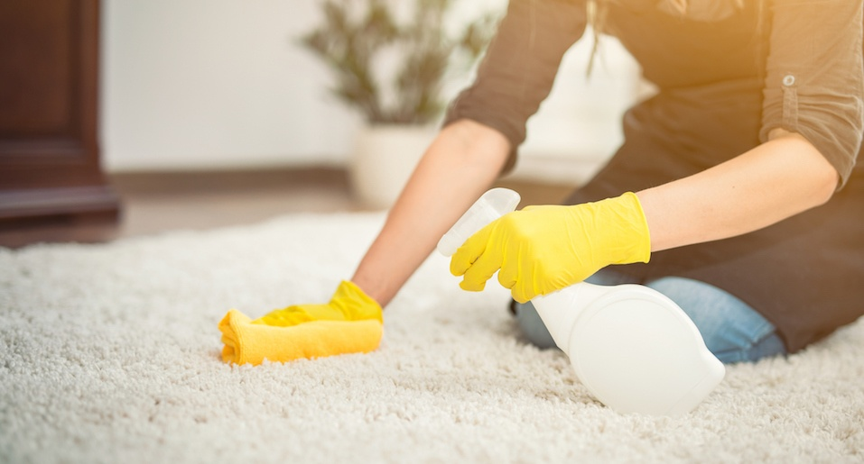 Housewife cleaning carpet