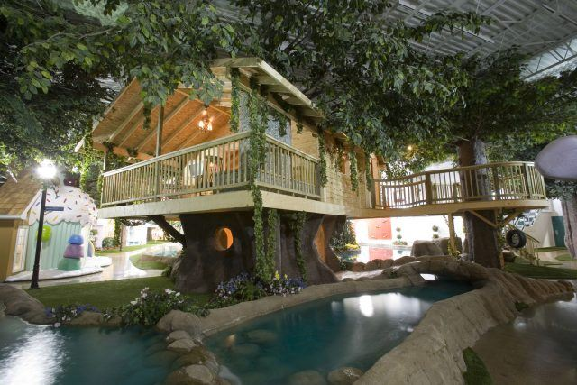tree house office