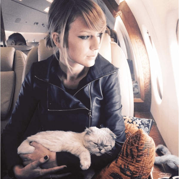 Taylor Swift named her cat Meredith Grey