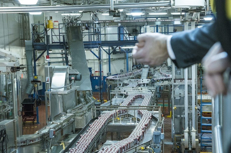 Man overlooking production of beer