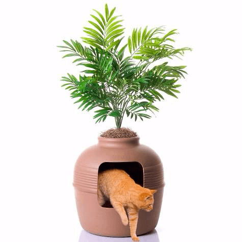 Plant hidden litter box