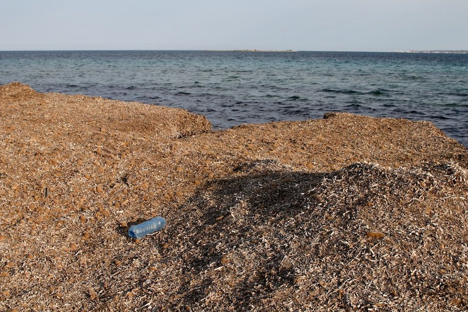 Abandoned plastic bottle on the coast