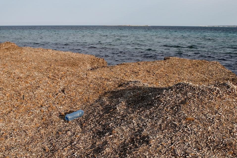 Abandoned plastic bottle on the coast