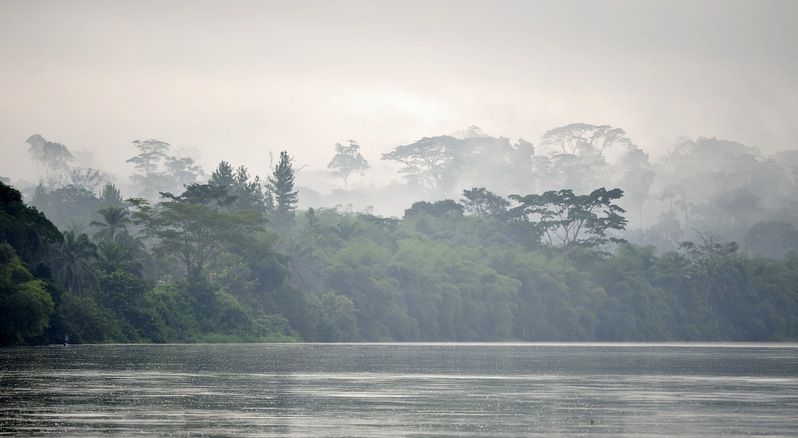 Morning fog on the African river Sangha. Congo. Africa