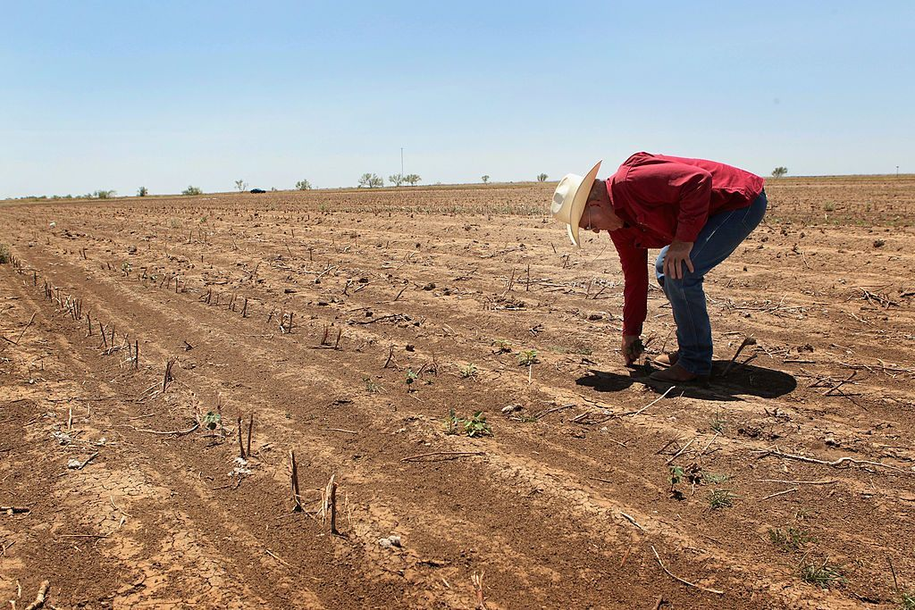 Farmer struggles in a dried out field